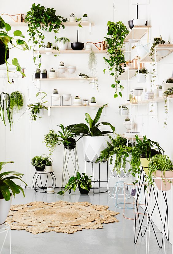 Greenery, color tendencia 2017