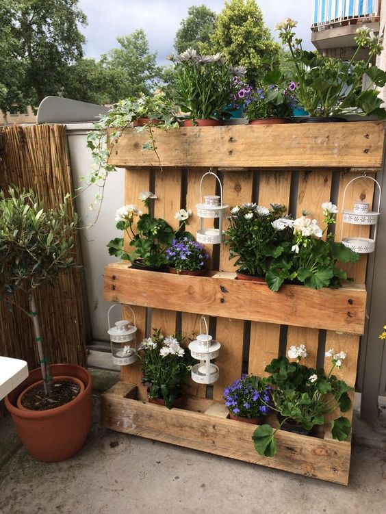 decoracion terrazas flores y plantas